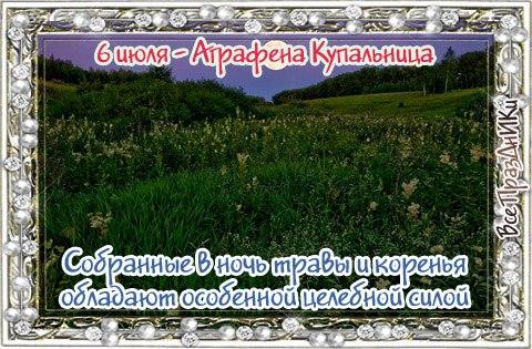 https://cs7057.vk.me/c7008/v7008719/32b8c/Hw0C0rWv6so.jpg