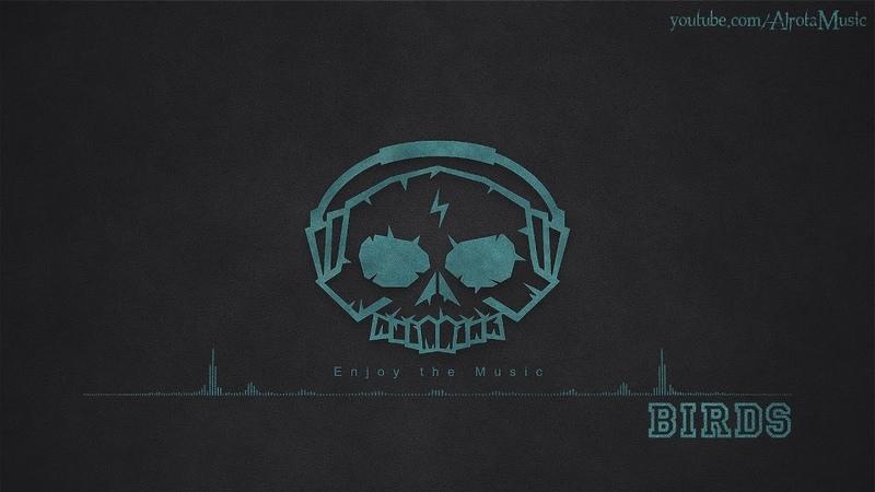 Birds by Seamus Mcnamara - [2000s Hip Hop Music]