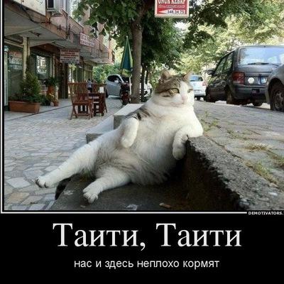 Сергей Мосягин, Тюмень, id169493817