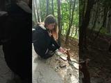Кисловодская белочка