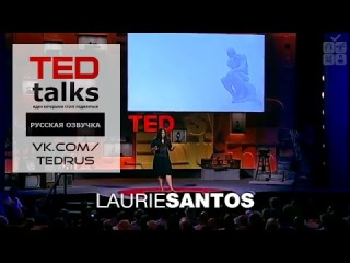 TED talks RUS x Лори Сантос: Экономика обезьян так же иррациональна, как и наша | Laurie Santos: A monkey economy as irrational as ours