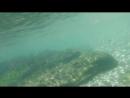 У берега в Береговом.