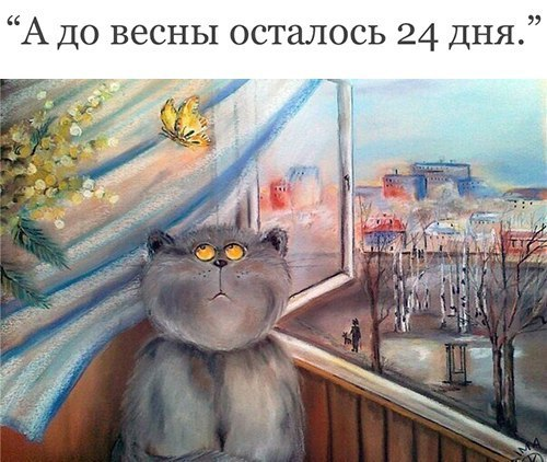 https://pp.userapi.com/c543109/v543109250/25ae2/r-x9K9vtc8A.jpg