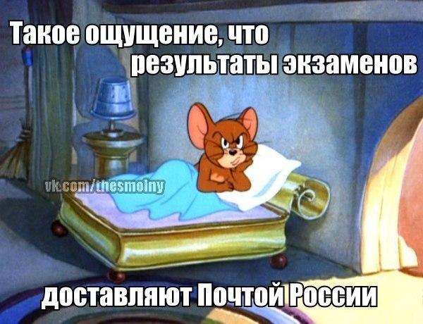 http://cs413027.vk.me/v413027021/158c/Tu-8si6avMM.jpg