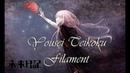 『歌ってみた』 Mirai Nikki Ending Yousei Teikoku Filament Cover Lyrics Sub Español