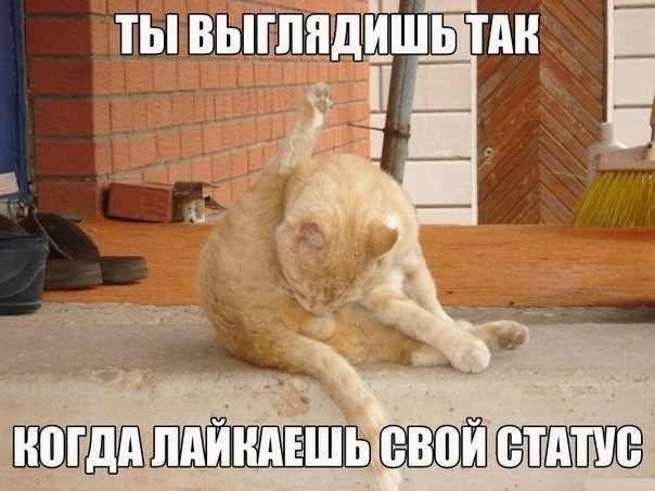 """В ноябре киевляне получат новые квитанции для оплаты """"коммуналки"""" - Цензор.НЕТ 3793"""