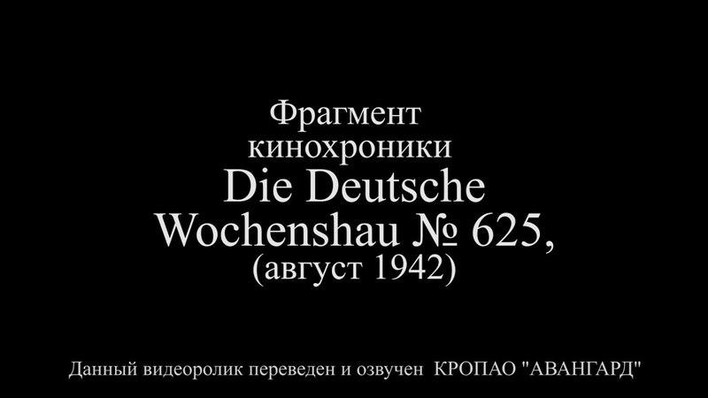 Армавир август 1942 год
