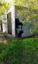 Тимур Шамохин. Фото №4
