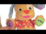 Обзор игрушки «Смейся и учись Ученый Щенок Fisher-Price (Фишер-Прайс)»