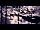 BONES - WHITE NOISE digitally zonked by prekrati