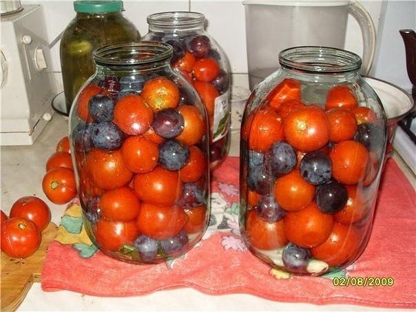 помидоры с синими сливами. в помидорах, консервированных с синими сливами, получается весьма приятный маринад, вкусные помидоры с нежным ароматом слив.рассол настолько вкусный, малосолёный, что