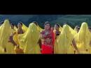 Желтые тюльпаны BollywoodChaos