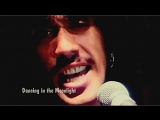 Thin Lizzy «Dancing in the Moonlight» (1977)