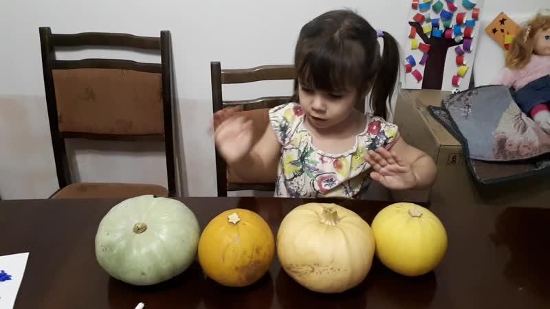 Агния do you know how pumpkins grow