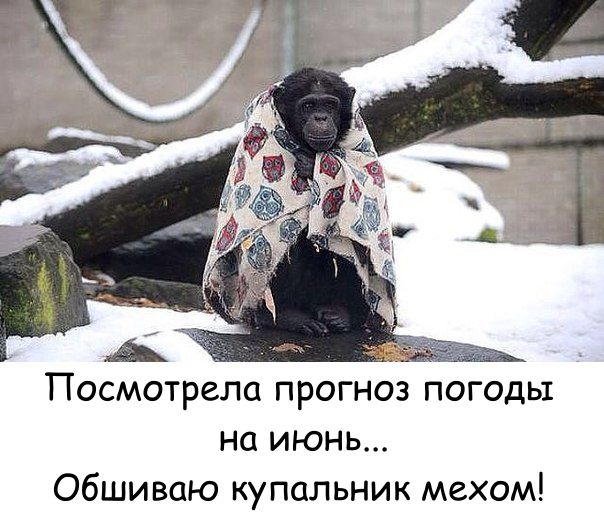 https://pp.userapi.com/c543103/v543103722/21700/_CODSoKc-oQ.jpg