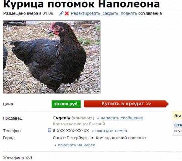 объявления недвижимость казахстан