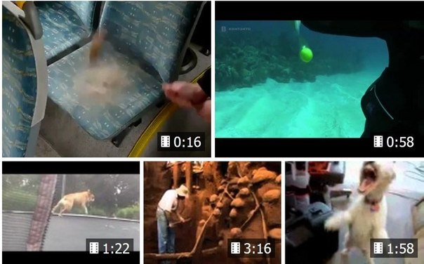 "10 SHOCKING VIDEOS ""ЧТО WILL be IF. ?"" now you learn everything!)) - ""Что will be if to knock on sitting in a minibus? "" - "" What will be if to break egg under water? "" - "" What will if boil the cook - колу?"" To Pass to viewing.\"" >"