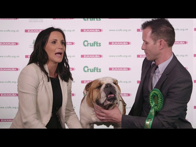 Crufts 2017 | Best of Breed winners Victoria and Richard Eaton and bulldog Roman