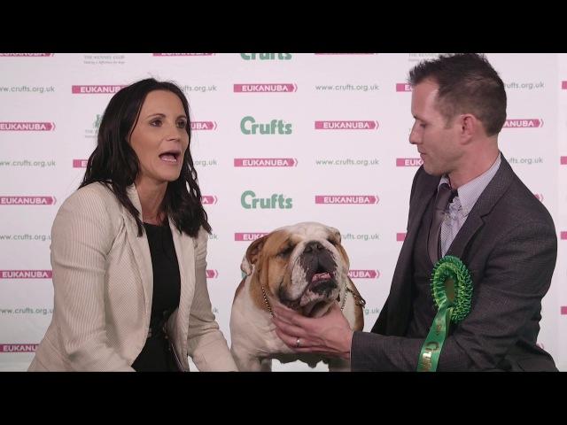 Crufts 2017 | Best of Breed winners Victoria and Richard Eaton and bulldog Roman