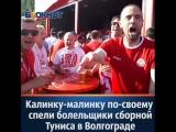 Калинку-малинку по-своему спели болельщики сборной Туниса в Волгограде