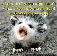Михаил Гаврилов, 29 мая 1986, Москва, id1993453