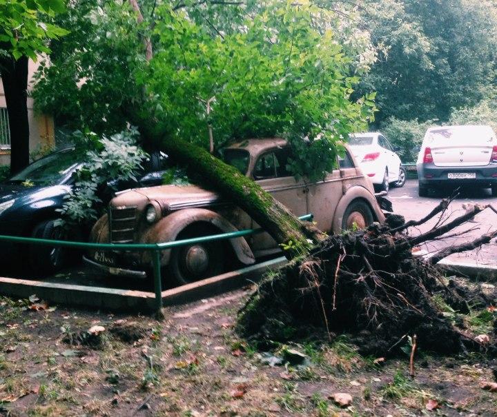 Один человек умер вПодмосковье в итоге урагана