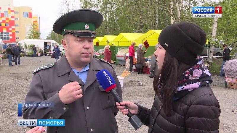 Россельхознадзор и прокуратура выясняют, чем торгуют на рынке в Соломбале (ГТРК Поморье 31.05.18)