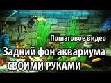 Задний фон в аквариум своими руками