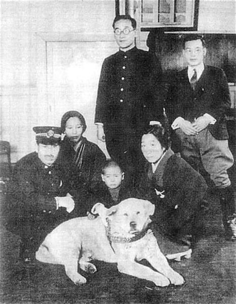 Хатико: редкие фотографии самой верной собаки в мире В 1932 году пёс по кличке Хатико стал национальной сенсацией. Его преданность своему хозяину настолько впечатлила народ Японии, что история