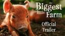 Самая большая маленькая ферма The Biggest Little Farm 2018 Official Trailer