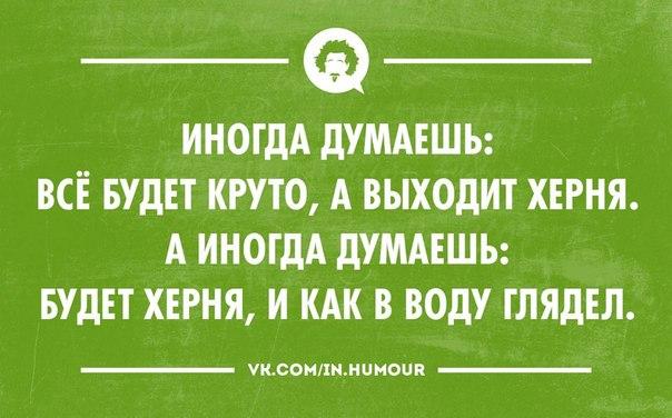 http://cs14115.vk.me/c617724/v617724486/576f/WDyVD5LqHt0.jpg