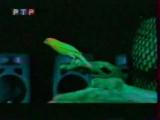 Линда - РТР о съёмках клипа Отпусти меня