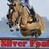 SILVER FOAL horse club (Kremenchug)