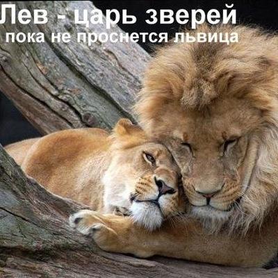 Андрей Борисенко, 15 августа , Киров, id76443528