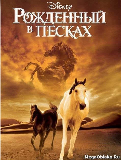 Рожденный в песках / The Young Black Stallion (2003/WEB-DL/WEB-DLRip)