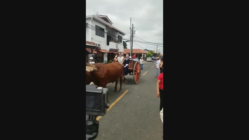 ВДМ в Панаме День 3