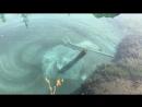 Голубое озеро рисует
