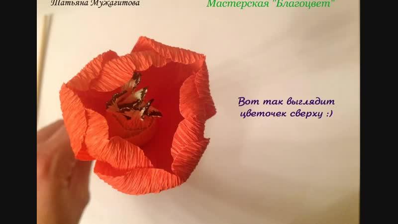 Мастер-класс Как сделать тюльпан с тычинками, автор Татьяна Мужагитова и Мастерская Благоцвет