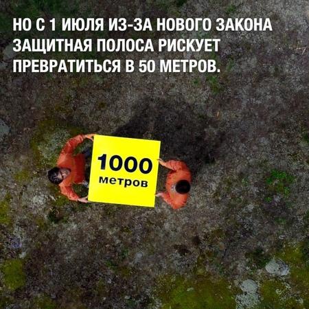 Greenpeace России on Instagram Из за закона №538 ФЗ ширина лесов вдоль нерестовых водоёмов может сократиться с 1000 до 50 метров ⠀ Как это будет