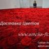 Доставка Цветов Хмельницкий АМЕЛИЯ Flower Delive
