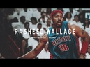 Rasheed Wallace Mix | Ball Don't Lie ᴴᴰ