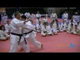 Lucio Maurino teaching Gankaku/Chinto Bunkai sequence #1 - Karate All Stars 2013