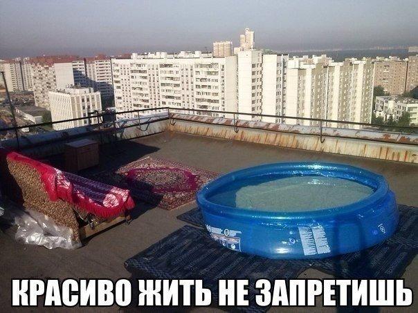 http://cs614919.vk.me/v614919685/5862/OsoaVH4yg5Q.jpg