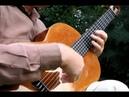 "Valery Gaydenko -- Russian Romantic Guitar -- ""Осенние листья -- B, Mokrousow"