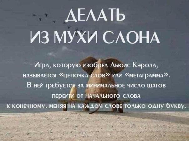 Фото №456258326 со страницы Каролины Романовой