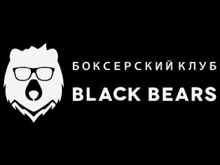 Боксёрский клуб black bears