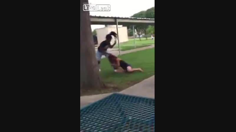 """Black Supremacy Thug Attacks Child-Holding Girl Because She Wanted To """"Beat A Cracker"""""""