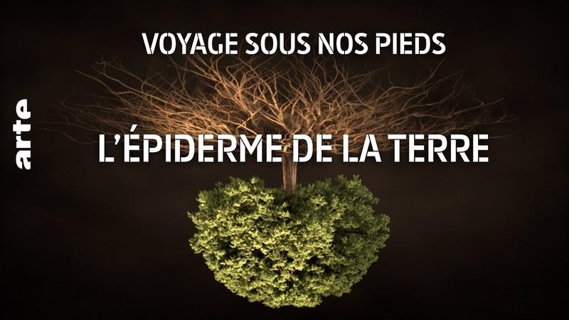 Voyage sous nos pieds | L'épiderme de la Terre 1 | ARTE Découverte