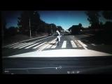 Вот как надо переходить дорогу....