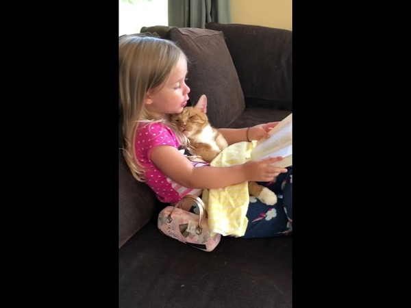 Story time with bailey